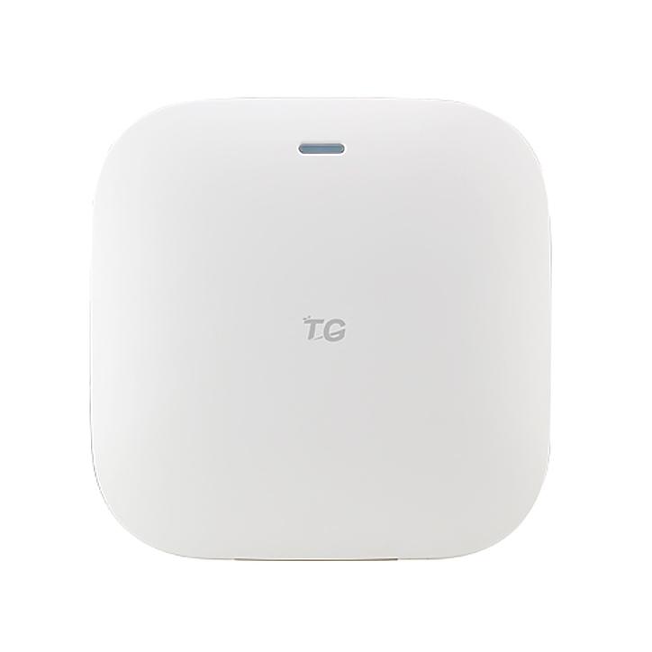 Точка доступа TG-NET WA3130i
