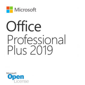 Microsoft Office Pro Plus 2019 SNGL OLP NL 79P-05729